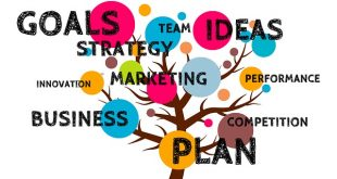 Как составить маркетинговый план бизнес-плана компании
