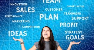 Как выбрать методику составления бизнес-плана